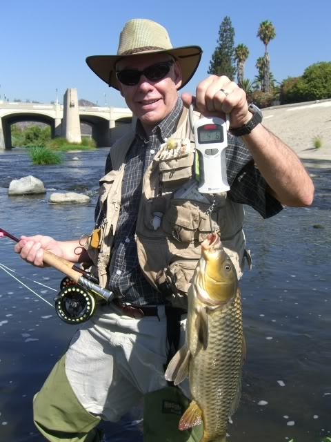 Carp lariverflyfishing page 11 for Fishing in los angeles