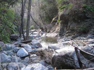 Beautiful canyons such as this one dot the San Gabriel Mountains.