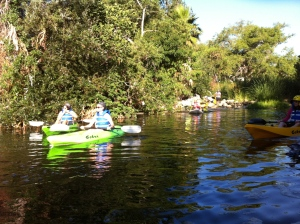 PADDLE UP: The L.A. Conservation Corps guides a group through still waters and overhanging willows. (Jim Burns)