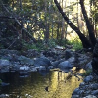 Winter fly fishing rocks in the San Gabriels