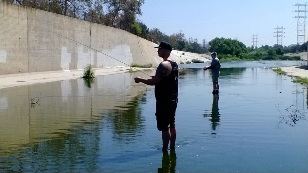 Summer heat brings out L.A. River bass and tilapia (1/3)