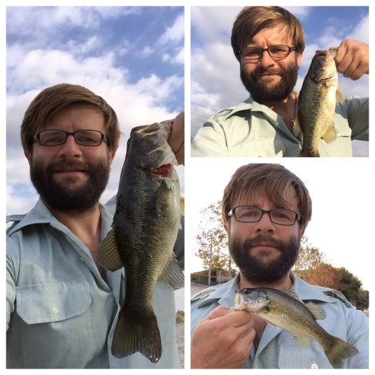 It's 'selfie evident' to John Tegmeyer, after catching eight bass, four common carp, in three hours that the river lives. (John Tegmeyer)