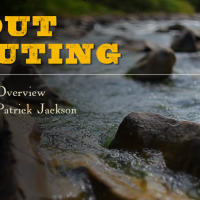 Switzer Falls: the most probable place to find native trout