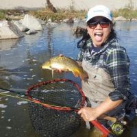 LA River carp catch, three years in the making