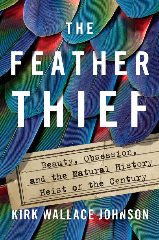 FeatherThief_7-12-3