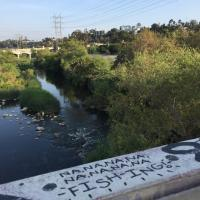 'Tag,' you're fishing the LA River!
