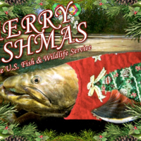 Merry 'Fishmas' to you! -- 5 a.m., Saturday